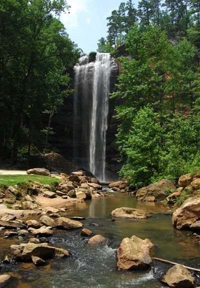 toccoa falls single parents Expand your social circle with toccoa falls single parents on the best free internet social site for toccoa falls singles with children connect with other single parents in toccoa falls and share the experience of single.