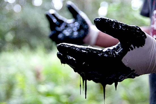 Life Among Cacao Fields and Oil Contamination by Mitchell Anderson