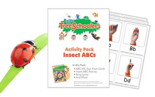 ABC Insect Flashcards