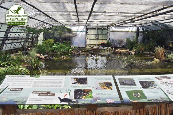 Im Wasserschildkrötenhaus ist inzwischen die Ausstellung fertig montiert worden.