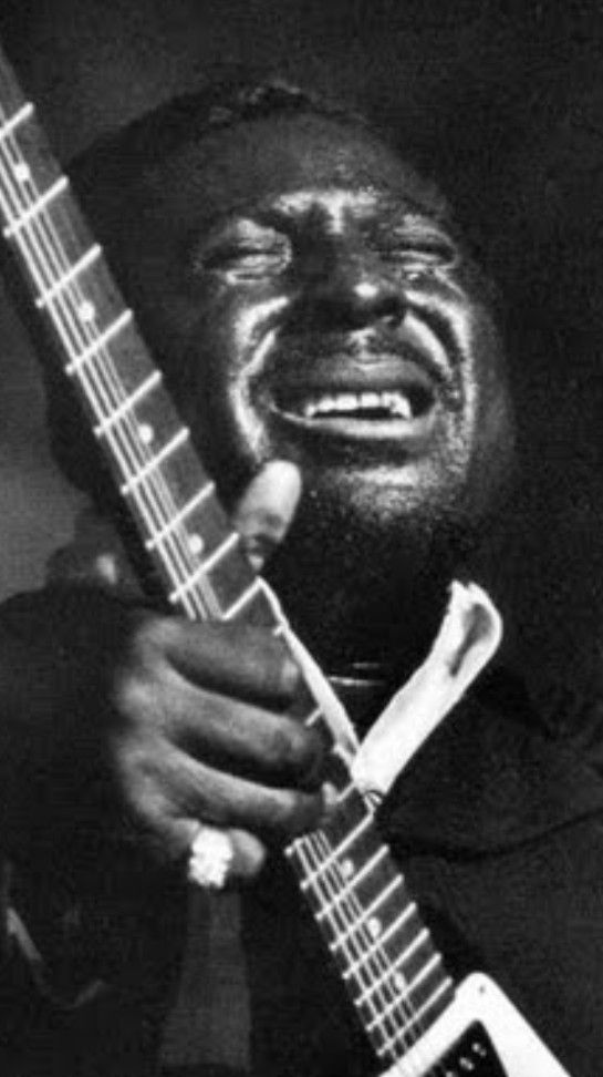 Albert Collins Albert King Blues Music Blues Artists