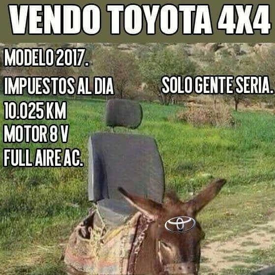Pin By Eladio Larraule On Reflexion In 2020 Funny Good Morning Memes Really Funny Memes Funny Spanish Memes