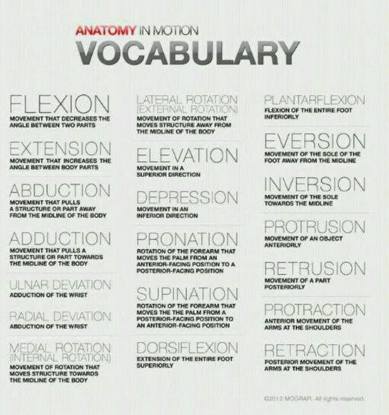 Veterinary Terminology for vet techs or veterinarians