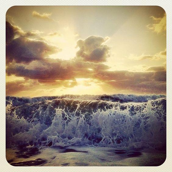An ocean entangled. Photo by ftlauderdalesun