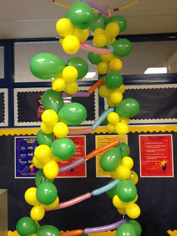 Biology Classroom Decoration : Models dna and hula on pinterest
