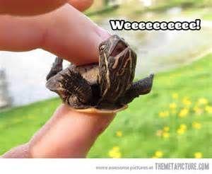WEEEEEEEEE! :)