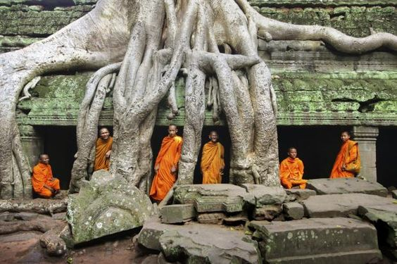 #Cambodia In the jungle surrounding Siem Reap, temples spring like mushrooms from the forest floor; more than a thousand years old, and aligned with astrological constellations, they were built as dedications to the Angkorian Gods.