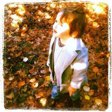 l'insouciance de l'automne...