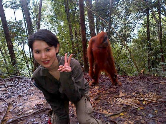 Fitria Yusuf donated $20,000 to help fund rainforest restoration in Sumatra  (You too could buy your way onto this exclusive Pinterest board)