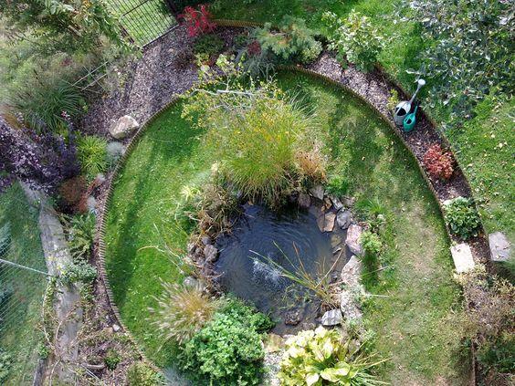 a eye of the garden bird view