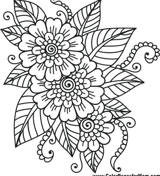 Simple Adult Coloring Pages Simple Adult Coloring Pages Easy