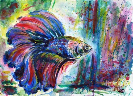 Pinterest the world s catalog of ideas for Betta fish painting
