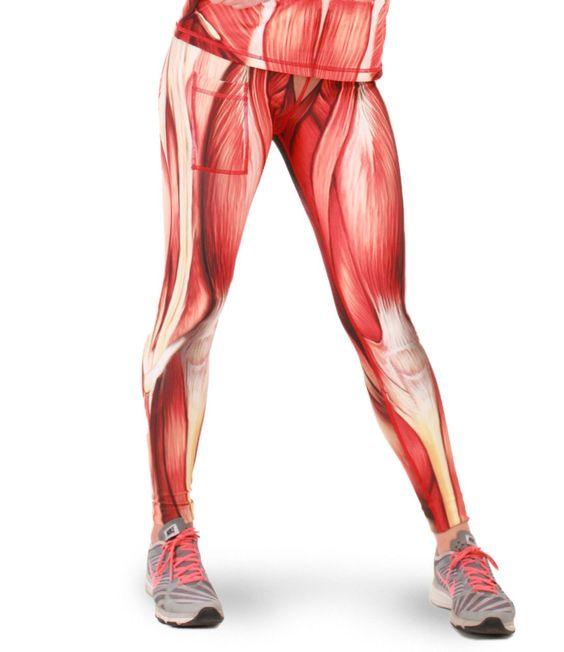 women's muscle tights front | fitness | pinterest | tights, women, Muscles