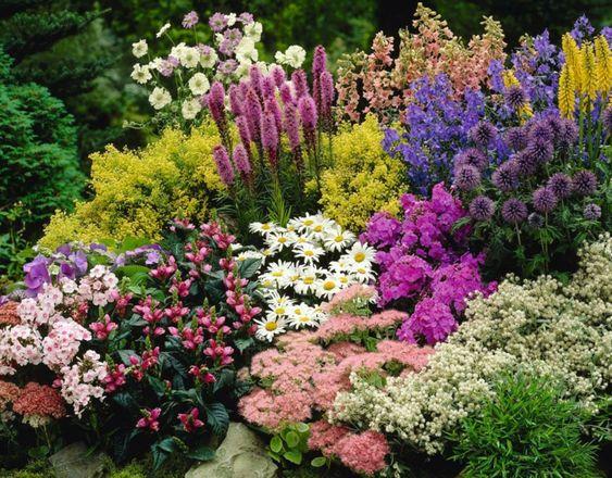 vertikaler garten mit lavendel und andere blumen in fröhlichen, Hause und Garten