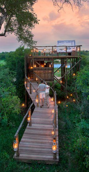 The Tinyeleti Treehouse. A Treehouse Night at the Lion Sands Private Game Reserve, South Africa