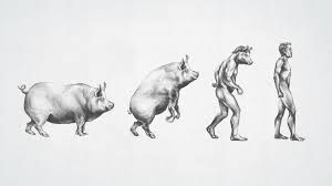 Resultado de imagem para surreal animal illustrations