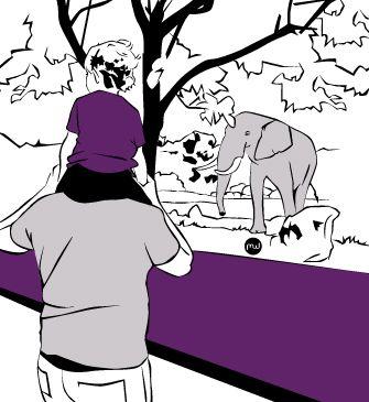 Idées de sorties avec enfants à Sigean - La réserve Africaine.