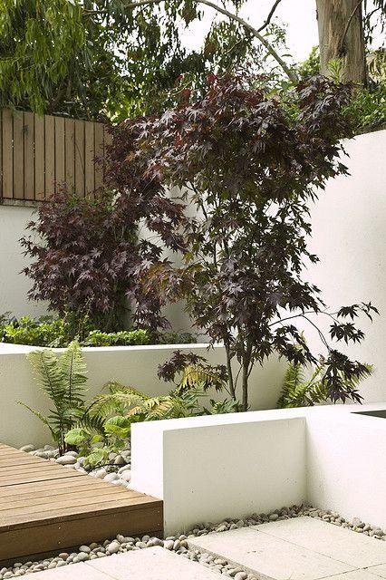 innenhof design pflanzen hecken gräser terrasse essmöbel
