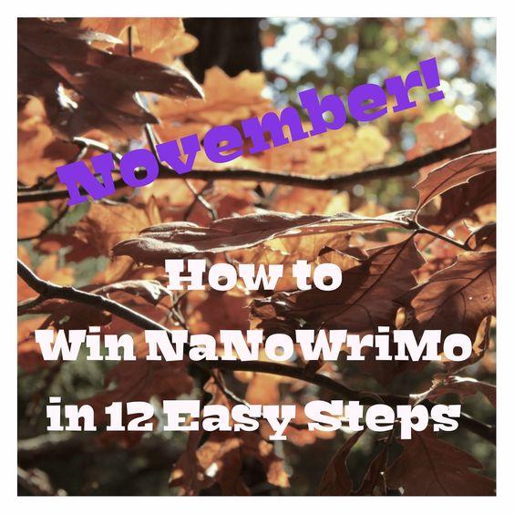 Rebecca Gomez: How To Win NaNoWriMo In 12 Easy Steps