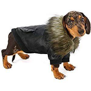Rypet Dog Leather Jacket Waterproof Small Dog Winter Coat Puppy