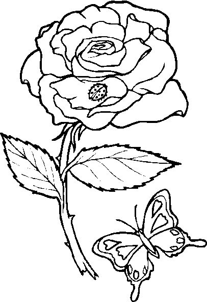 Hearts and roses coloring pages rose coloring image with butterfly