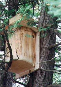 Flying Squirrel Nesting Box Plans...   The View Outside ...