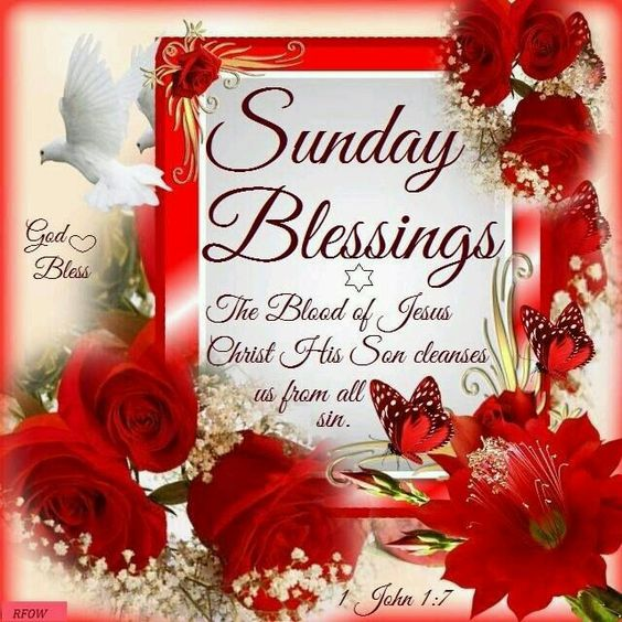 Good Morning My Love Have A Blessed Sunday : To my sister and yours wish you a blessed sunday