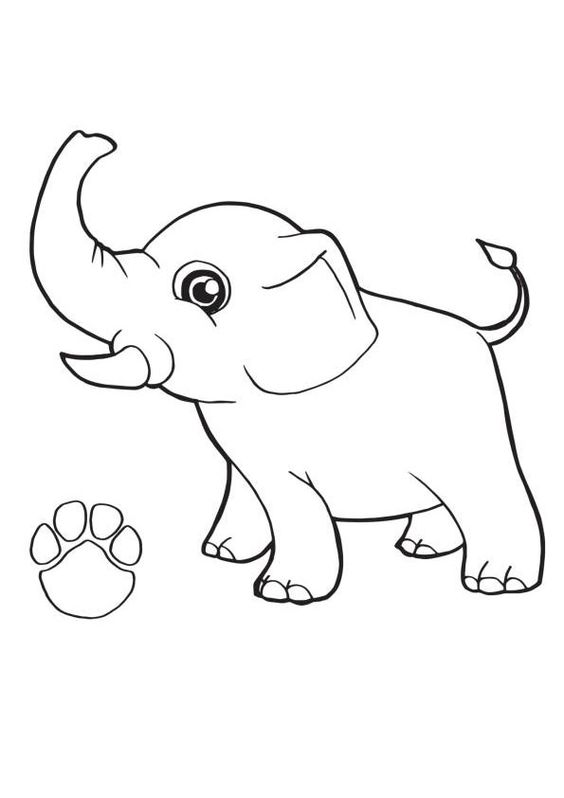 Baby Elephant Coloring Page In 2020 Elephant Coloring Page Shark Coloring Pages Paw Patrol Coloring