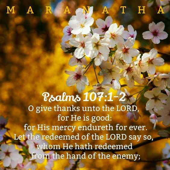 Psalms 107:1-2 (KJV) O give thanks unto the LORD, for he is good: for his mercy endureth for ever. Let the redeemed of the LORD say so, whom he hath redeemed from the hand of the enemy;