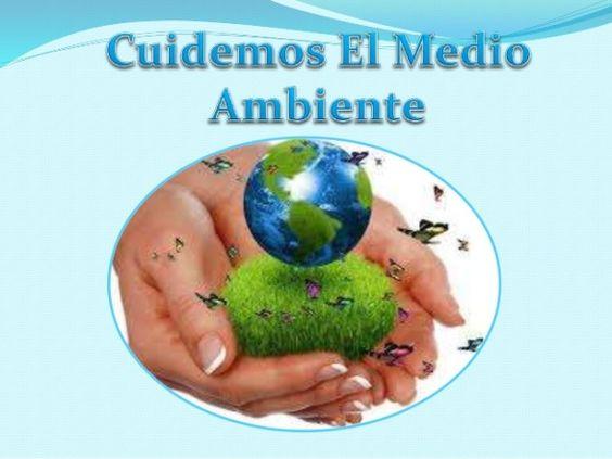 Seguiremos luchando por cuidar el medio ambiente
