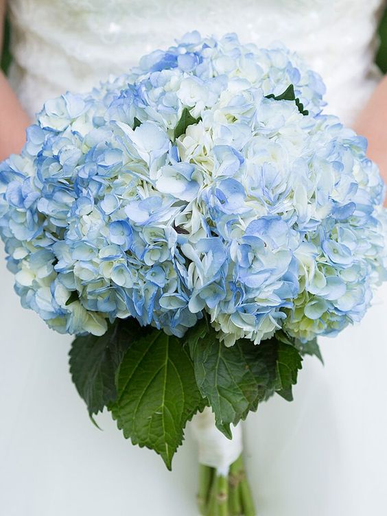 September Wedding flowers -  Hydrangeas Wedding Bouquets
