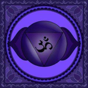 Sesto ChakraIl suo nome sanscrito è AJNAAltri nomi: chakra della fronte, terzo occhio, chakra frontaleSimbolo: due petali di loto di colore indaco