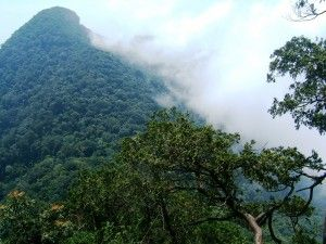 King Peak in Ba Vi National Park - nr Hanoi -  Vietnam
