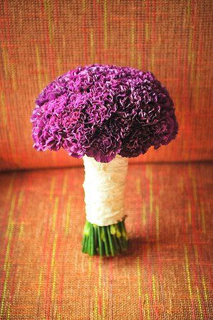 While some view carnations as 'cheap' flowers, there is no denying their incredible beauty when arranged properly! This is a beautiful hand-tied bridal bouquet of purple/fuchsia carnations.: Bouquets Carnation, Carnations Bridesmaid, Bridal Bouquets, Purple Carnation Bouquet, Bridesmaid S Bouquet, Purple Bouquets, Bridesmaid Bouquets