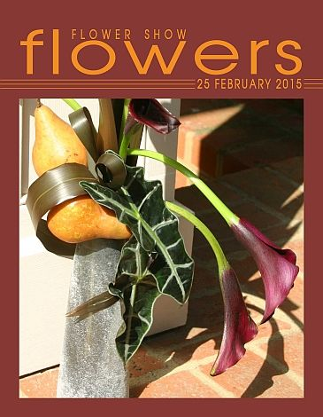 25 February 2015… The Year in Flowers PLANT LIST: Alocasia, Calla Lily, Flax, & Pears FROM: www.FlowerShowFlowers.com