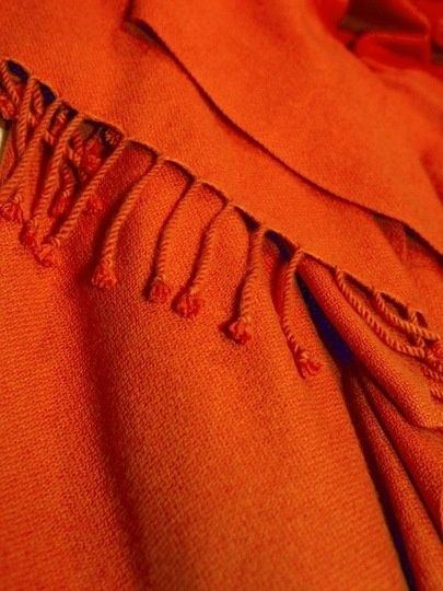 orange.quenalbertini: Burnt orange