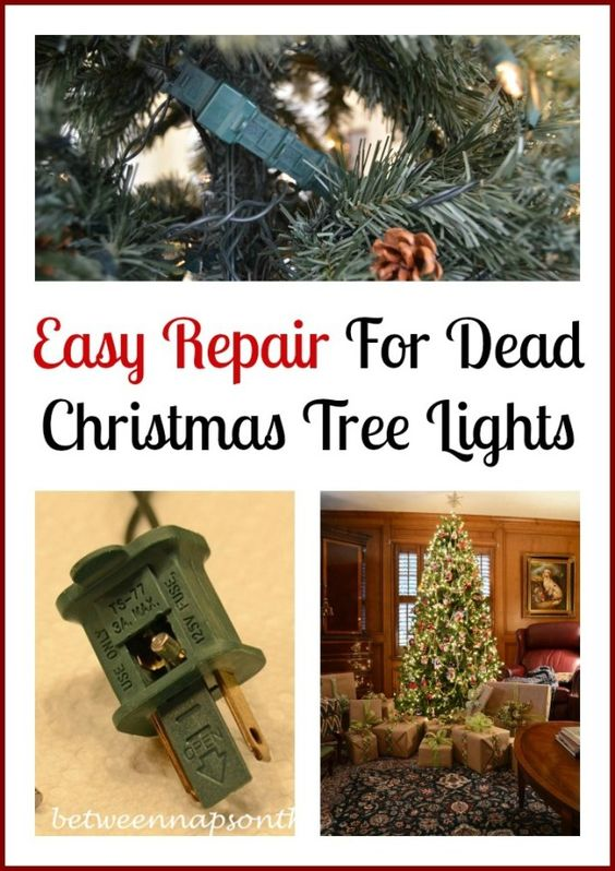 Don't Throw Out Those Dead Christmas Tree Lights | Beautiful ...