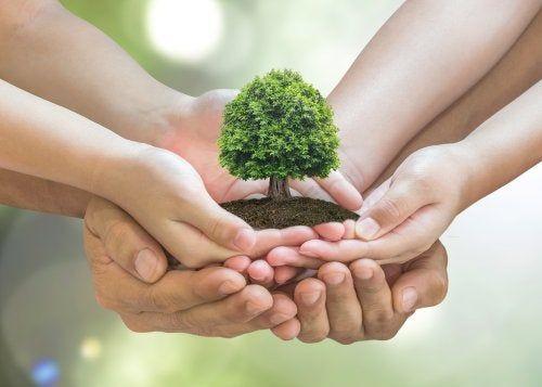 Mi Infografia Sobre Consejos Para Cuidar El Medio Ambiente