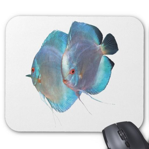 The mouse pad of Blue Diamond Discus fish, No.02