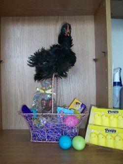 Unique Easter Baskets