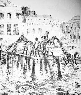 Saiba História: Tigres na cidade