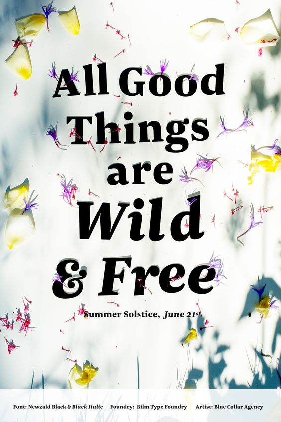 All Good Things are Wild & Free - featuring Newzald typeface from Kilm Type Foundry - art by Blue Collar Agency #fonts #fontspiration #typography