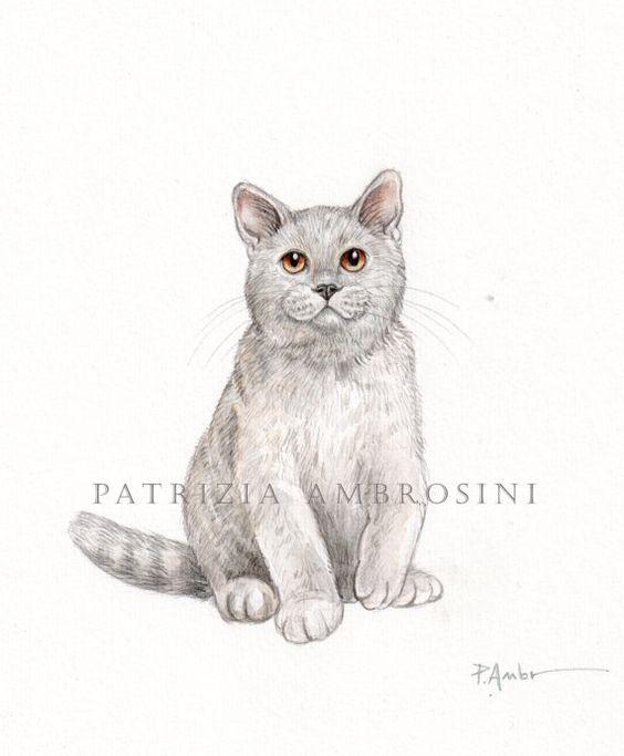 Handpainted  7x9 watercolour  Gray cat by happyapplebumblebee