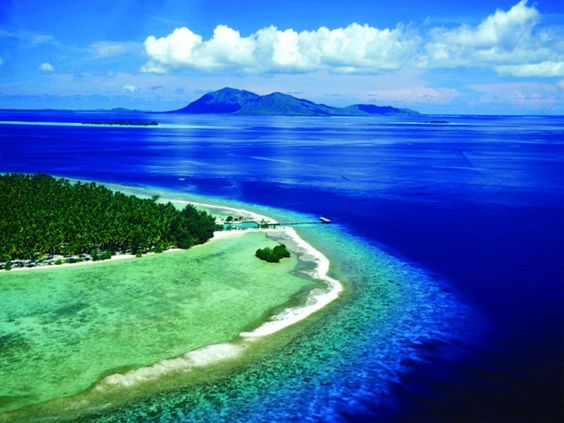 Karimunjawa Island, Java, Indonesia. Such an amazing place! Been there last september :)