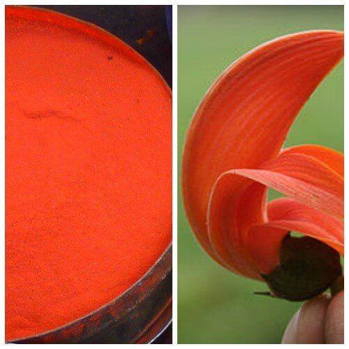 Orange Color Powder #orange #saffron #Tesu #flower #colored #powder