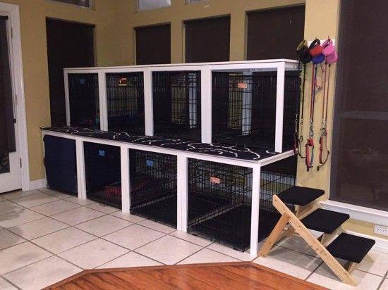 17grooming Salon Ideas Dog Rooms Dog Grooming Salons Dog Grooming Shop
