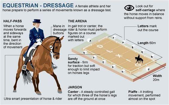 London 2012 Olympics: equestrian guide - Telegraph