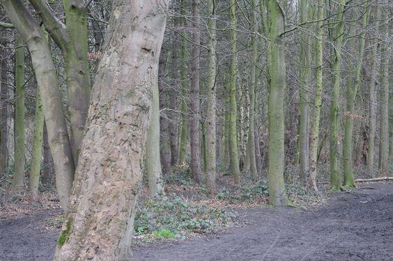 Croxteth Park