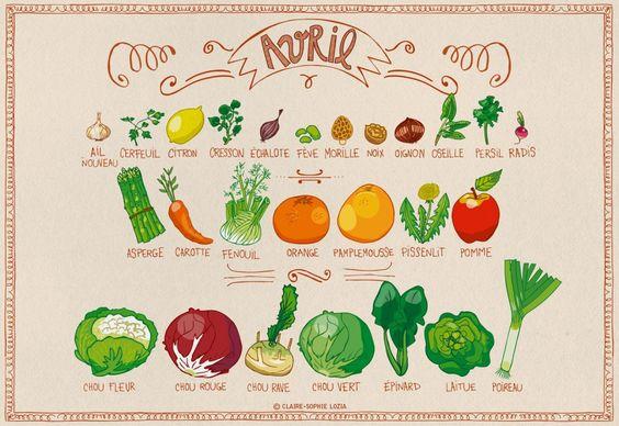 Fruit on pinterest - Calendrier fruits et legumes de saison ...