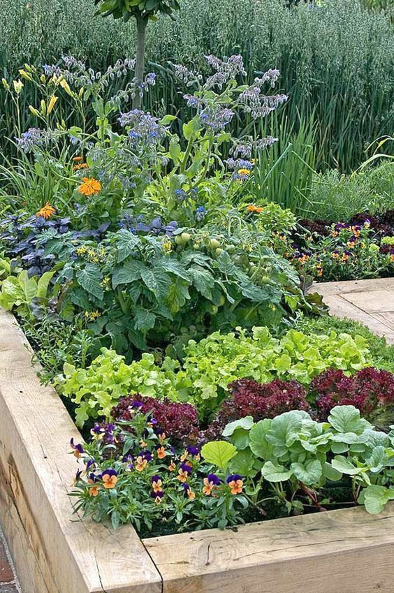 af18454bbb3eb68343f27f050f91109c - What Are The Basic Gardening Techniques